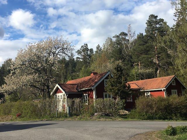 Drömhuset 10 min promenad från Kolmårdens djurpark