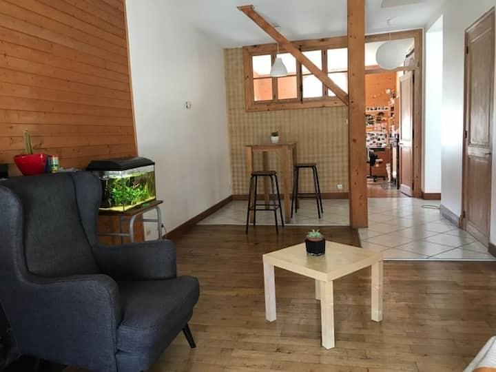 Appartement chaleureux, au calme  Grenoble centre