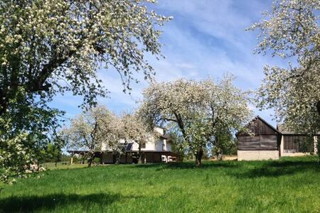 A Weekend for a Group of 6-12 in Podlachia, Poland - Wierzbice Górne - Vila