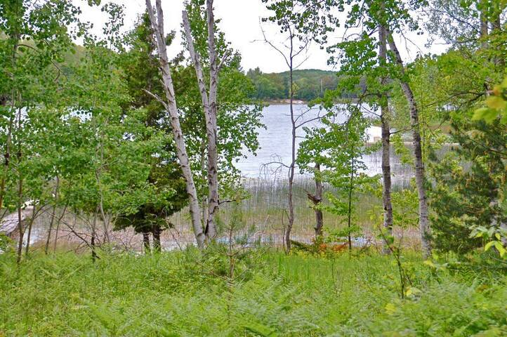 KING SUITE LAKE ACCESS: Hermitage of Pearl Lake