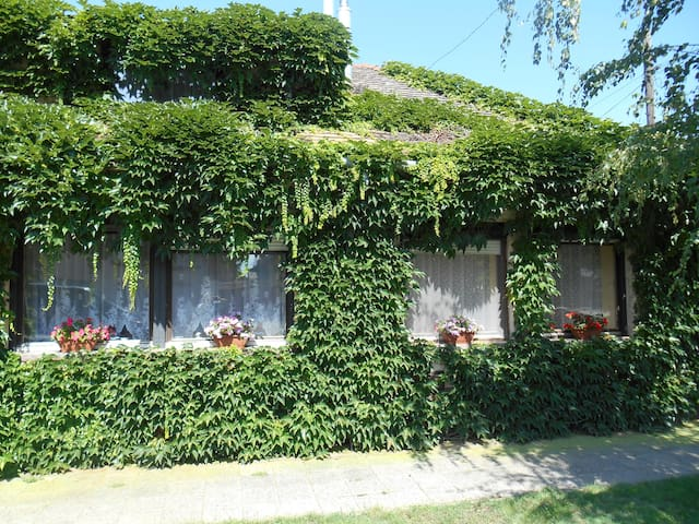 Zöld Ház