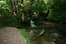 Mini waterfalls along cabin