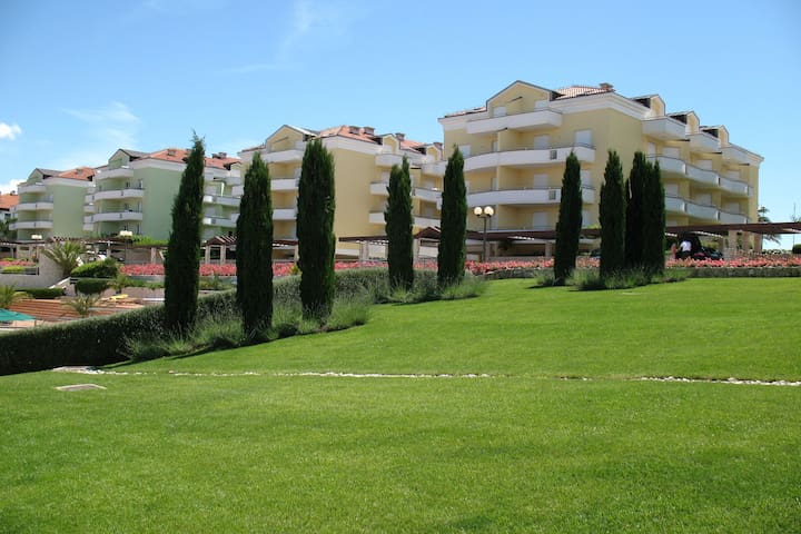 Holiday Park Facilities and Services