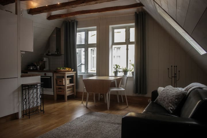 Unique apartment. In heart of Bergen