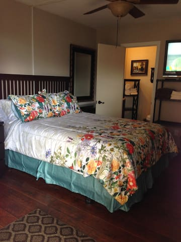 Private access master BR/BA close to downtown SD ! - Spring Valley - Huis