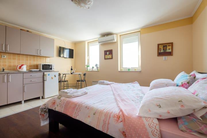 Apartment  Belgrade,City Center ZV