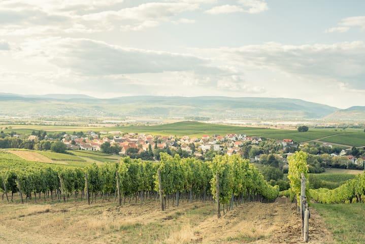 Urlaub auf dem Weingut