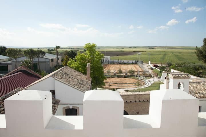 This is Puglia | Relax, Food & Nature in Masseria