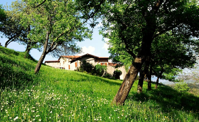 Appartamento Lumache farmholiday - Tavarone - Apartamento