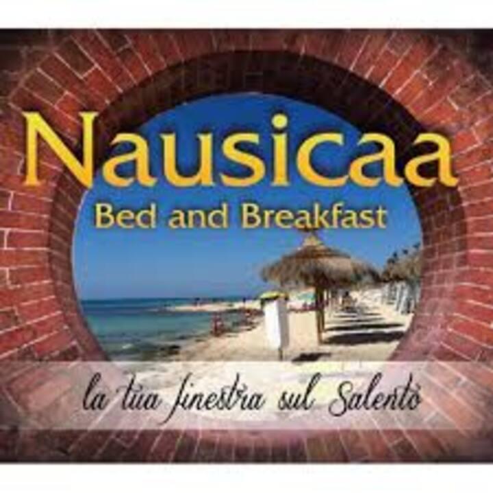 Il Nausicaa è a 8 km dal mare cristallino