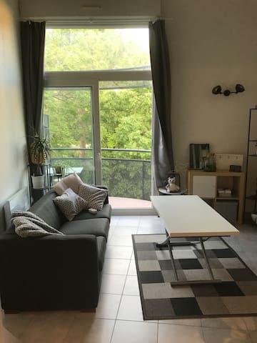 Appartement duplex lumineux avec balcon