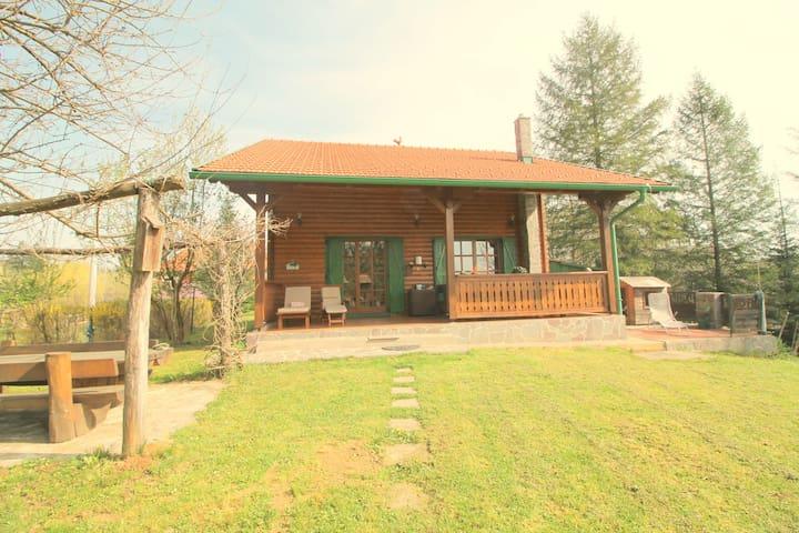 Villa Andy Mreznica, river beauty - Karlovac - Hus