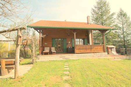 Villa Andy Mreznica, river beauty - Karlovac - บ้าน