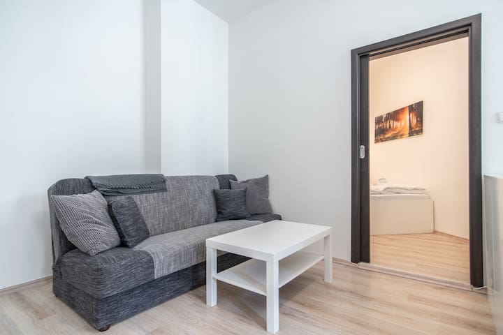 Apartment with one bedroom near metro and Zizkov TV Tower by easyBNB