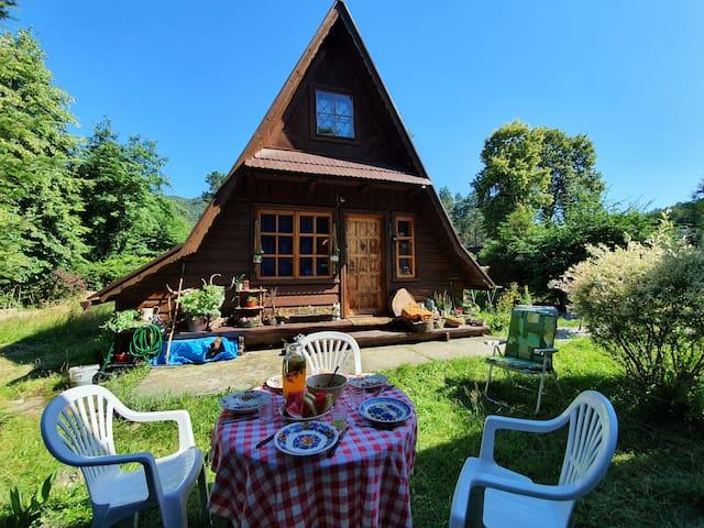 Drewniany dom z widokiem na rzekę i góry