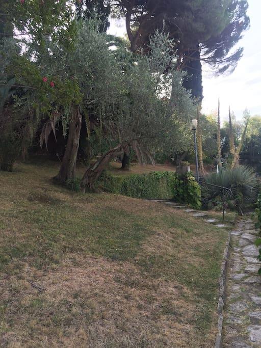 Grande giardino che circonda la casa