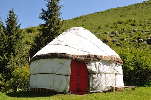 Shared Yurts (5 beds available)
