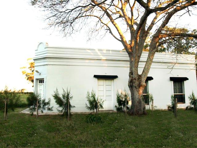 Gran  casa campo , piscina y olivos - Jose ignacio