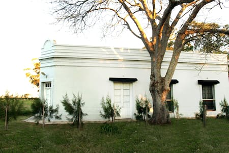 Gran  casa campo , piscina y olivos - Jose ignacio - Talo