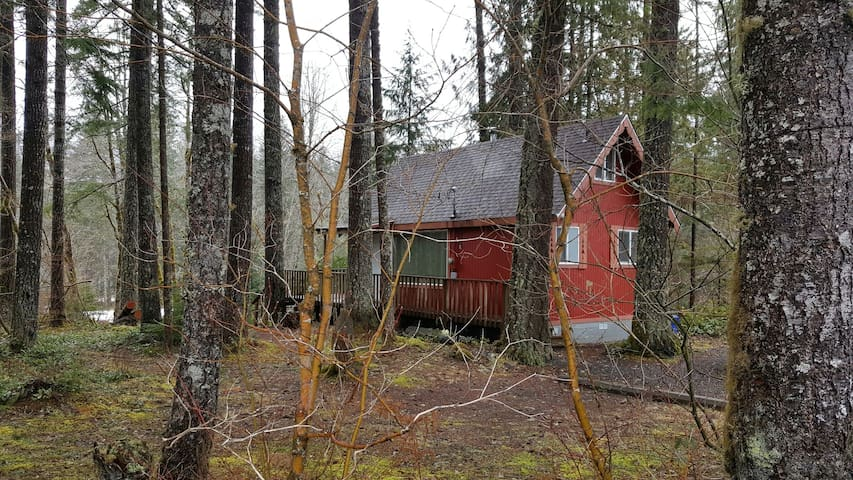 Charming Cabin by Mt Rainier - Ashford - Stuga