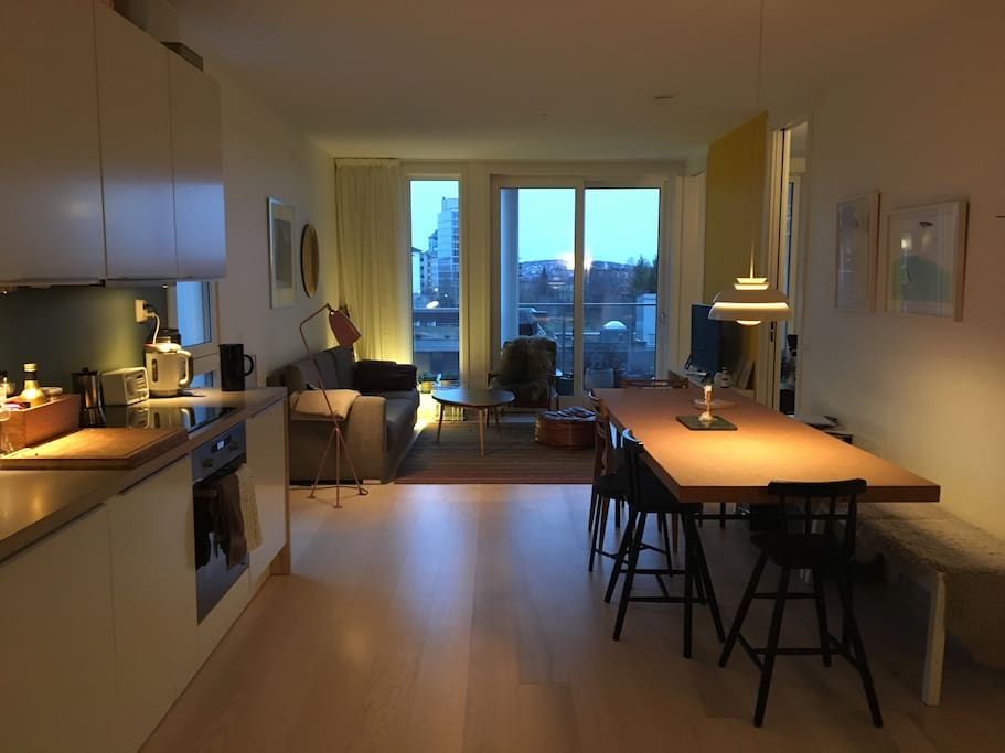Living room and kitchen in one.