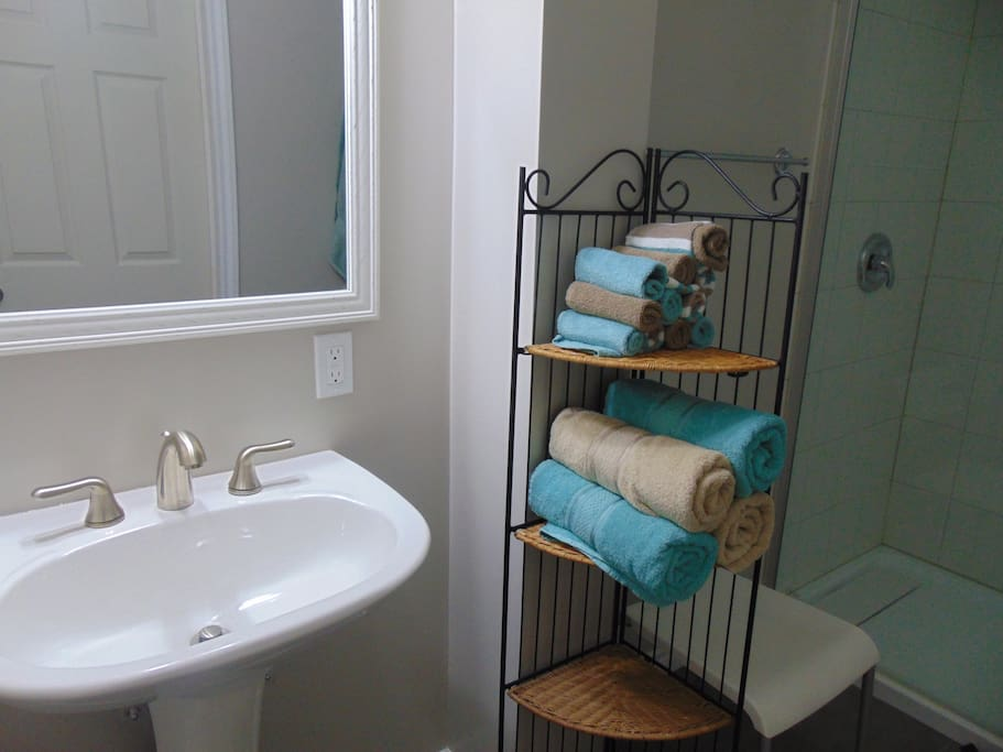 Oversize glass encased shower with sink area private from water closet. Separate vent.