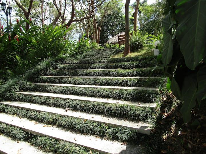 Steps to Cafetal Buenavista