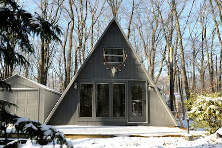 The tiny Antler A-frame