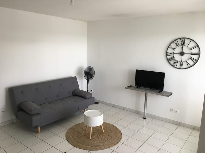 FORT DE FRANCE : APPARTEMENT T2