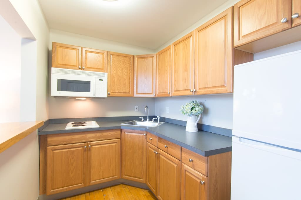 Kitchenette with cooktop, dishwasher, garbage disposal, fridge, and microwave