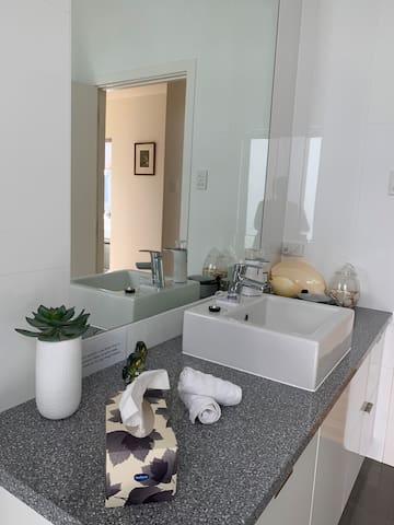 Handbasin area in Private Full bathroom/washroom