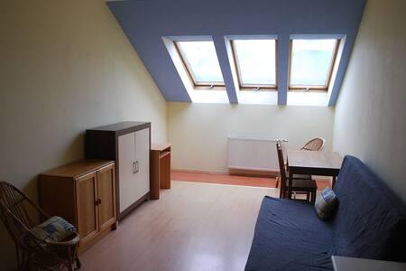 Attic appartment - Krakau