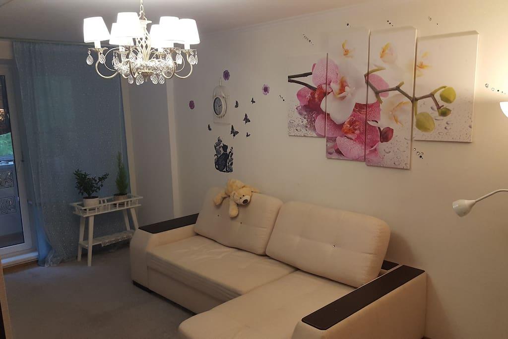 Спальня 1, 25 кв.м, диван раскладывается (2м*2 м)