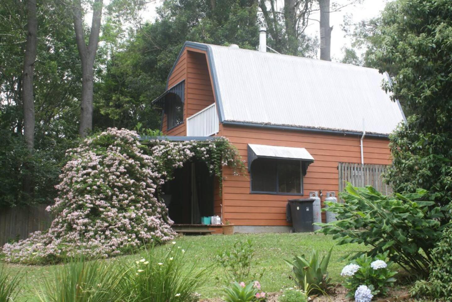 The vine covered veranda