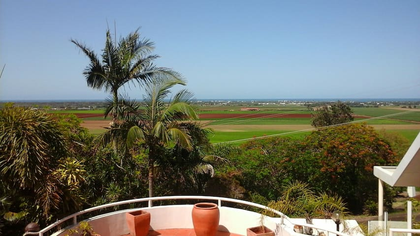 OCEAN  /  CANEFIELDS VIEWS  -  Executive Style - Qunaba - House