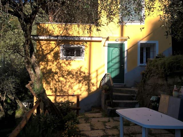 luminoso appartamento romantico tra gli olivi - Cogorno - Apartament