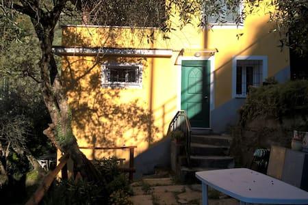luminoso appartamento romantico tra gli olivi - Cogorno