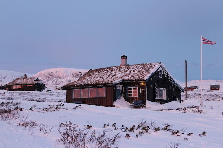 Beautiful and traditional log cabin in Ustaoset - Ustaoset  - Cabaña