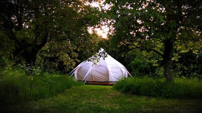 Gorgeous glamping near Gudhjem and round church