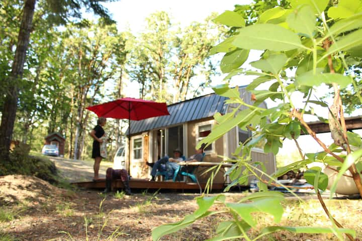 Keene's Tiny House in the Forest