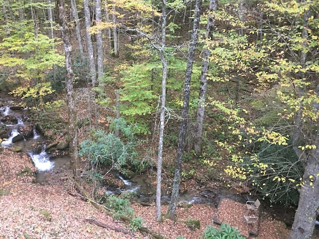 Check out the view from our back porch - Soco Falls creek sounds magical everyday!