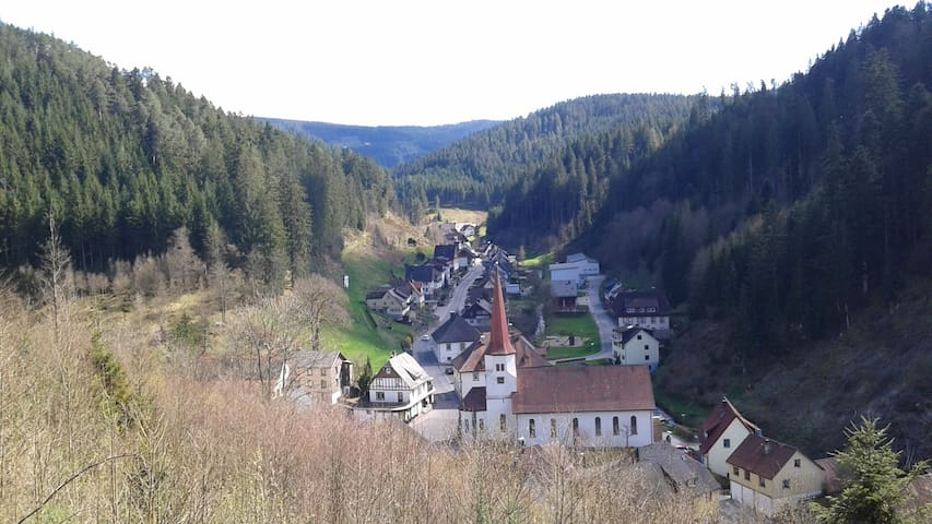 Cosy holiday home in the heart of the Black Forest - Triberg - Byt