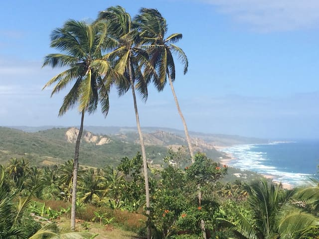 Magnificent Island and sea views. - Bathsheba