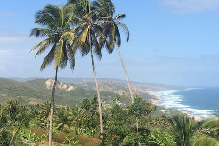 Magnificent Island and sea views. - Bathsheba - Huis