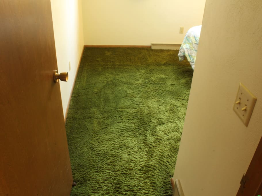 Glorious SHAG carpet