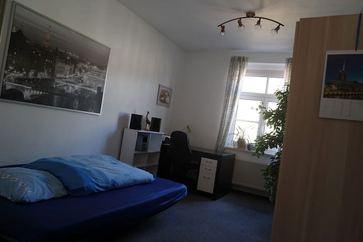 Big full furnished room near center - Dresden - Huoneisto