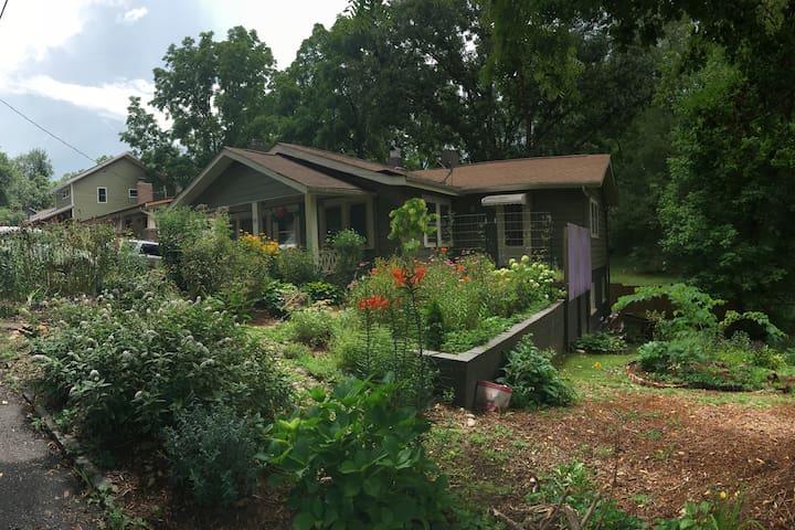 Jupiter's Garden Studio