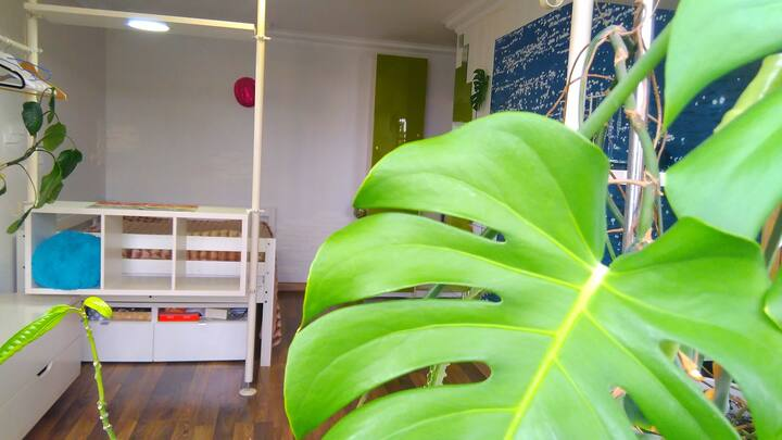 2 Room Garden Flat /2х Комнатная Квартира-сад