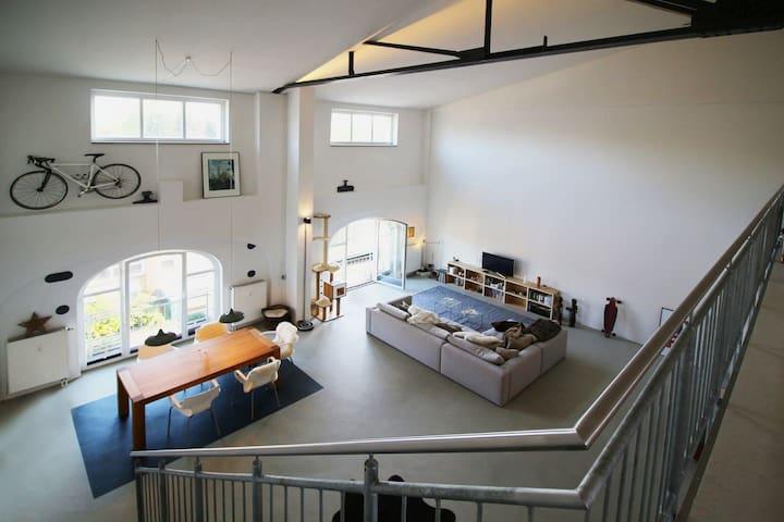 190 m2 sunny designer factory-loft