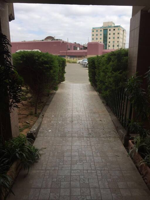 Walkway to driveway